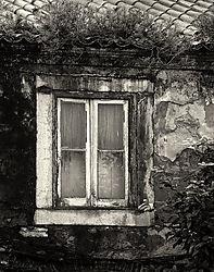 Lisbon_Alfama_Window_2009_SEP2_14x11.jpg