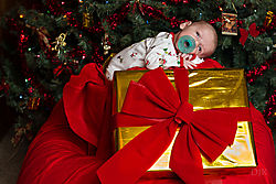 Lesiak_Christmas_Photos-2145.jpg