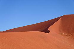 Winnk_dune.jpg