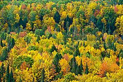 Landscapes70-200-4.jpg