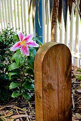 Spring_Garden_1.jpg