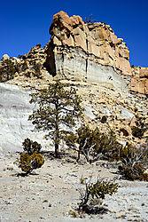 Tree_Canyon_Wall_-_small.jpg