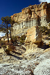 Whodoo_trees_and_Canyon_Wall_-_small.jpg