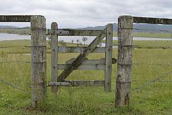 gate_small_fine.jpg