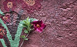 Flor_y_Flor.jpg