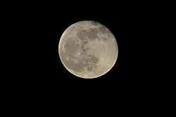 MoonNikAssgn2.jpg