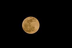 moon-22.jpg