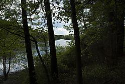 Sudbury_River.jpg