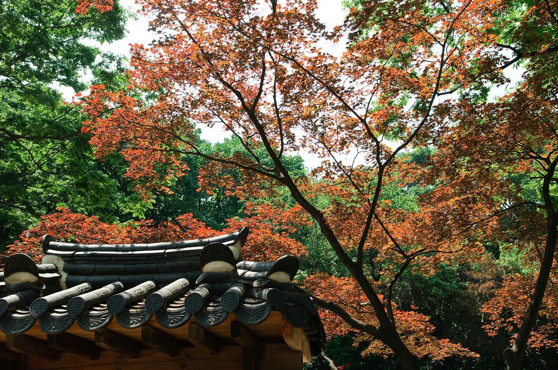 Seoul_Pal_ste_12