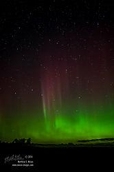 aurora-2566.jpg