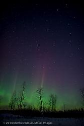 aurora-5007.jpg