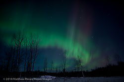 aurora-5645.jpg