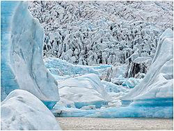 The_glacier.jpg