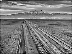 Tracks_in_the_sand_BW.jpg
