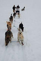 Alaska_2008_Disk_2_575_edited.jpg
