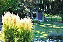 Backyard_Garden_Shed1.jpg