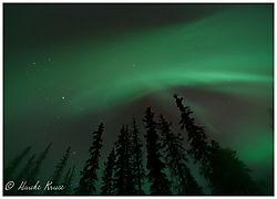 Aurora_8.jpg