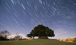 Boltons_Bench_Star_Trails_1.jpg