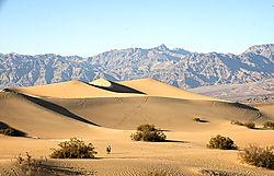 Sand_Dune_wide1_1024.jpg