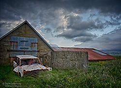 Abandoned_farm_Bergamot.jpg