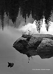 Rocky_Mountain_National_Park_9-28-2014_545.jpg