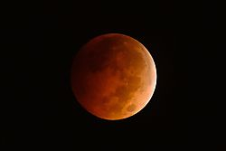 Blood_Moon_over_Texas_8Oct2014.jpg