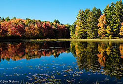 Autumn_s_Late_Afternoon_Light_2.jpg
