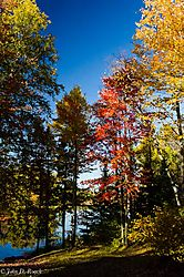 Colors_of_Autumn_45.jpg