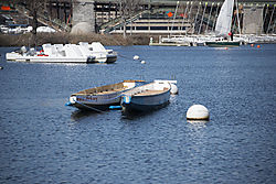 DSC_1011_-_Rowboats_on_the_Charles.jpg