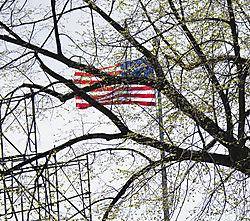 DSC_5542_-_Flag.jpg