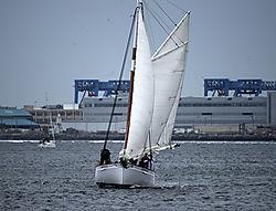 DSC_5555_-_Sailboat_Nikonians.jpg