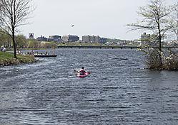 DSC_5586_-_Kayaker_on_the_Charles.jpg