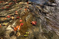 Along_the_Rocky_River-1.jpg