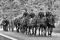 2014_Arlington_procession-2.jpg