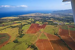 GREEN_ACRES_-Kauai.jpg