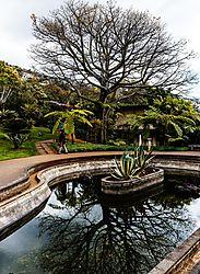 Madeira-3510_Kopie.jpg