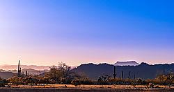 Queen-Valley-Morning_9919.jpg