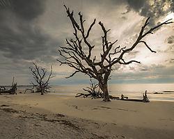 Jekyll_Island_beach.jpg