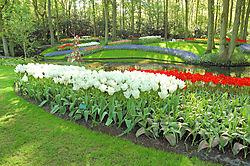 Keukenhof_Garden.JPG