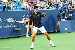 Djokovic_2014-13-N.jpg