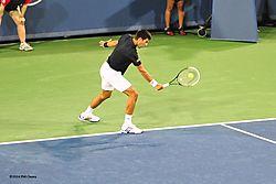 Djokovic_2014-3-N.jpg
