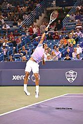 Federer_2013-20-N.jpg
