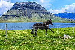 2014-05-30_Iceland_Day9_070.jpg