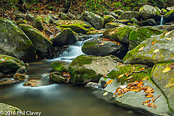 Henwallow_Falls_hike-1-9.jpg