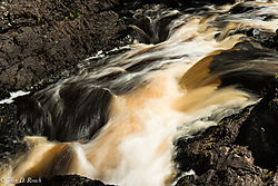 Black_River_Rapids_2.jpg