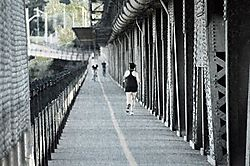 high_level_bridge.jpg