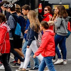 crop11.jpg