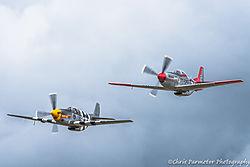 P-51s.jpg