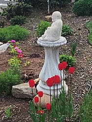 Tulips-_-Budda.jpg