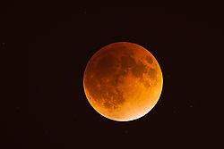 Super_Moon_Eclipse.jpg